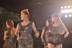 Secret in Mnet 20's Choice Awards, 2010