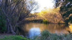 Wetlands in Hill Canyon.