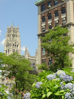 Pupin Hall (right), Union Theological Seminary (center) Riverside Church (left)