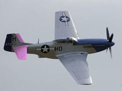 The tailplane of this P-51 is shown in pink.