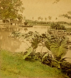 Interior waterways in the park shown in a c.1880 image, soon after the park's creation