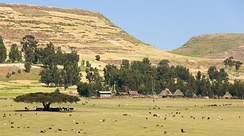Rural area in the Simien Mountains National Park