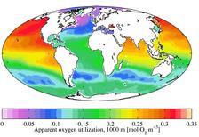 Среднегодовое содержание выделяемого кислорода, на 1000м глубины (2009)