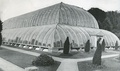 Great Conservatory, Chatsworth House, with Joseph Paxton