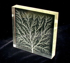 High-voltage breakdown within a 4 in (100 mm) block of acrylic glass creates a fractal Lichtenberg figure