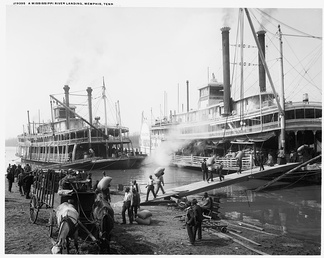 Mississippi Riverboats being loaded on the Memphis waterfront (1906)