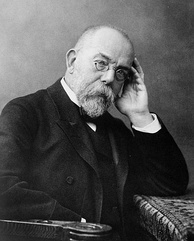 Robert Koch discovered the tuberculosis bacilli. The disease killed an estimated 25 percent of the adult population of Europe during the 19th century.[22]