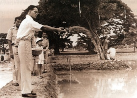 Bhumibol on agricultural practice in Chitralada Royal Villa