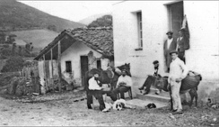 Basque Countrymen near the France–Spain border in 1898, with characteristic horse, donkey and dogs. These were the type of animals introduced to America.