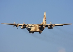 C-130H used by the Egyptian Air Force.
