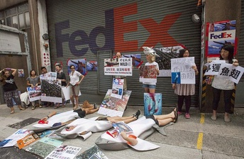 Anti shark fin protesters at the FedEx depot in Hong Kong's Kennedy Town 3 July 2016