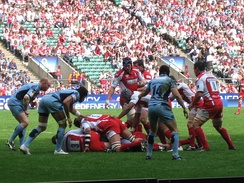The Cardiff Blues during their win against Gloucester in the final of the 2008–09 EDF Energy Cup