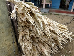 Bagasse is the remaining waste after sugar canes have been crushed to extract their juice.