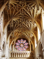 Cathedral vault and rose window