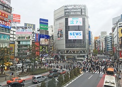 Shibuya attracts many tourists.