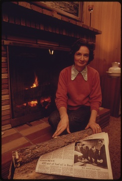 A woman uses wood in a fireplace for heat. A newspaper headline before her tells of the community's lack of heating oil.