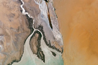 Colorado River Delta as seen from space (2004); Isla Montague is the large island in the center.