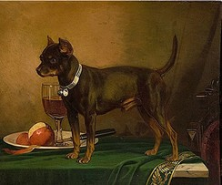 A painting of an English toy terrier by Frederick August Wenderoth in 1865