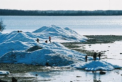 Piles of drift ice on the shore of Puhtulaid, near Virtsu, Estonia, in late April