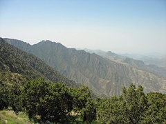 Jabal Sawda (3,000 m (9,800 ft)) located in the Hijaz Mountains