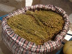 Торговля травой гармалы в Южном Казахстане