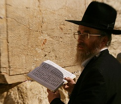 A Haredi Jew reciting Psalm 119 at the Western Wall