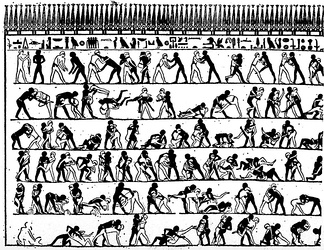 Drawing of an Egyptian burial chamber mural, approximately 4000 years old, showing wrestlers in action.