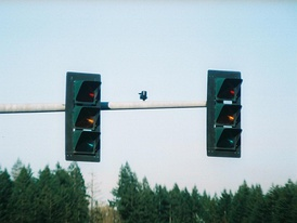 3M traffic signals installed in Shelton, Washington. Standing off-axis from the intended viewing area, these signals are invisible to adjacent lanes of traffic in daylight. (A faint glow is visible at night.)