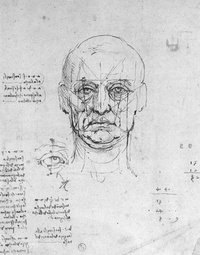 Study on the proportions of head and eyes by Leonardo da Vinci