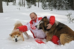 Putin with Yume and Buffy in 2013
