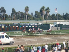 Bay Meadows 6th Race, August 16, 2008