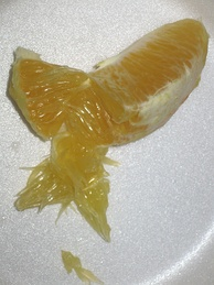A segment of an orange that has been opened to show the pulp (juice vesicles) of the endocarp