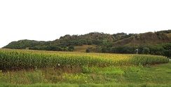 Loess Hills east of Mondamin.