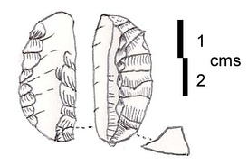"An ""Orange slice"" sickle blade element with inverse, discontinuous retouch on each side, not denticulated. Found in large quantities at Qaraoun II and often with Heavy Neolithic tools in the flint workshops of the Beqaa Valley in Lebanon. Suggested by James Mellaart to be older than the Pottery Neolithic of Byblos (around 8,400 cal. BP)."