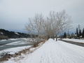 Bow River Pathway remains popular with joggers and cyclists all winter