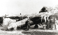 A photo of a Polish P-11 fighter covered in camouflage netting at an unidentified combat airfield