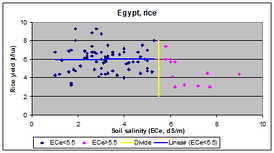 The irrigated rice (paddy) crop in Egypt has a salt tolerance of ECe=5.5 dS/m beyond which the yield declines.[206]