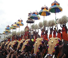 Thrissur Pooram is considered as the cultural cherry in Kerala's culture.