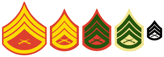 "L to R: Evening Dress coat, Dress Blue coat, Service Dress coat, Service Dress ""B"" and ""C"" shirt, and combat utility pin-on insignia for a Staff Sergeant"