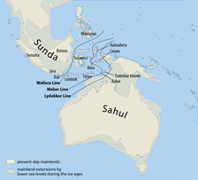 The continent of Sahul before the rising ocean sundered Australia and New Guinea after the last ice age.