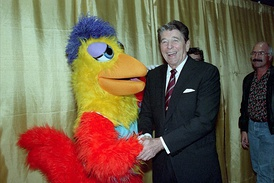 The San Diego Chicken, portrayed by Ted Giannoulas, was a staple in the San Diego area during the 1970s and 80s. On the right is United States President Ronald Reagan at a campaign stop in San Diego during the 1988 election.
