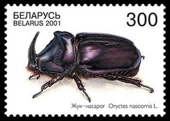 Почтовая марка. Беларусь, 2001 год