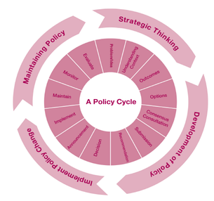 Example of a Policy Cycle, used in the PROCSEE Approach.[6]