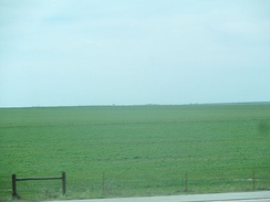 A glimpse of the southern Great Plains in southern Oklahoma north of Burkburnett, Texas