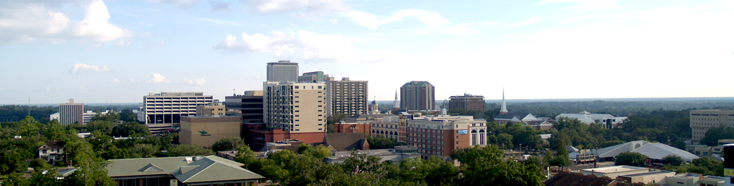 A panoramic view of Downtown Tallahassee