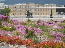 The oikostegi, a green roof on the Treasury building in Athens