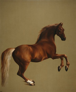 Whistlejacket, by George Stubbs (National Gallery, London)