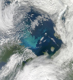 Phytoplankton bloom in the Barents Sea. The milky-blue colour that dominates the bloom suggests that it contains large numbers of coccolithophores.