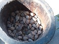 Kororima fruits are placed in a vessel for pulverizing and grinding.