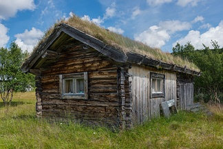 Traditional sod roof in Ljungris, Sweden